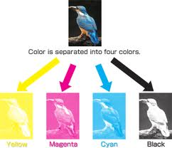 picture of four color printing