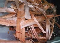 picture of gami fiber