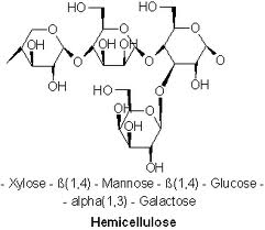 picture of hemicellulose