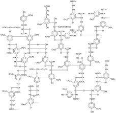 picture of lignin formula